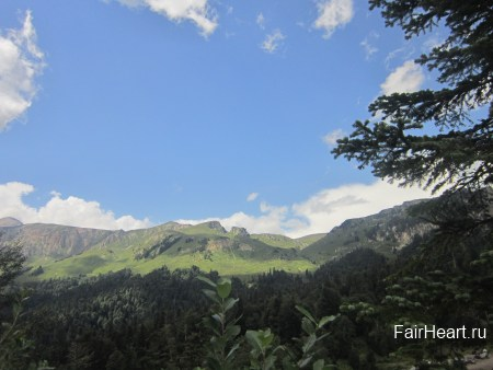 Альпийские луга Гузерипль